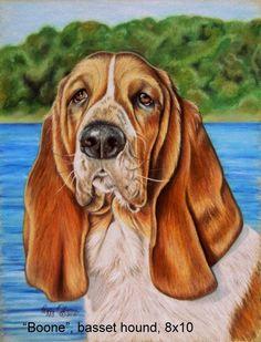 Pet Portraits, Art Pictures, Pet Birds, Dog, Pets, Gallery, Animals, Coloring Books, Art Images