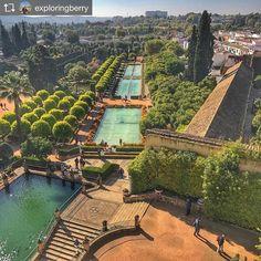 Repost from @exploringberry: View of the Royal Gardens of Córdoba from the top tower  quite pretty on a sunny day! Happy Monday everyone!  #sitiosdeespana #sitiosdeespaña #sitiazodeespaña #Spain #España #córdoba #andalucia #patrimoniodelahumanidad #turismo #turism #travel #viajar http://bit.ly/1KyuPRj (en Alcázar de los Reyes Cristianos)