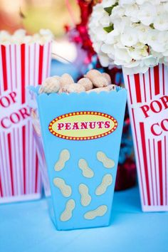Circus Themed 1st Birthday Party - Carnival, Circus Party Ideas |
