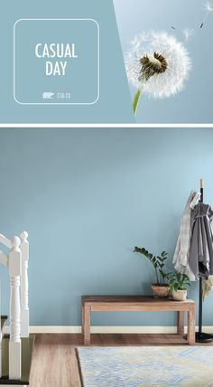 49 Ideas For Bathroom Paint Colors Behr Blue Accent Walls Light Blue Paint Colors, Calming Paint Colors, Light Blue Paints, Light Blue Walls, Neutral Paint, Gray Paint, Bright Bedroom Colors, White Light, Behr Paint Colors