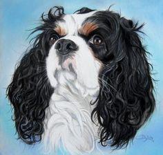 cavalier king charles portrait