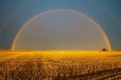 Full rainbow over the golden, harvested wheat field by Trevor Reeves, near Dawson Creek, BC Amazing Photography, Landscape Photography, Nature Photography, Photography Ideas, Cool Photos, Beautiful Pictures, Best B, British Columbia, Beautiful Landscapes