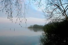 early morning 3 - Steinhuder Meer