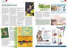 Der Geruchssinn der Fellnasen https://cat-competence.de/veroeffentlichungen-b2c/interview-geruchssinn-der-katzen/
