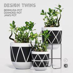 designtwins_pot