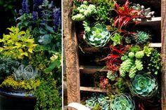 Expert Advice For Seattle Gardeners | Seattle Met