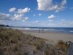 December 2013 - Summer Catch, Seaside Village, December 2013, Auckland, New Zealand, Coast, Waves, Island, Beach