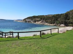 Frenchman Bay (Albany): UPDATED 2019 All You Need to Know Before You Go (with PHOTOS) Picnic Spot, Picnic Area, Albany Western Australia, Clean Beach, Best Mobile, Paddle Boarding, Great View, Dog Friends, Kayaking