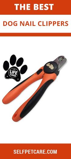 Our Experts Pick Up Top 10 Best Dog Nail Clippers in Make nail trimming a simpler process for you and your dog with this handy guide. Dog Nail Clippers, Sleeping Puppies, Dog Nails, Crate Training, Dog Care Tips, Be A Nice Human, Best Dogs, Your Pet