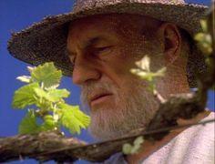 Jean Luc Picard in his vinyard.
