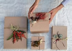 growable gift wrap / Flora Grubb