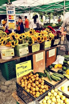 Green Market, Union Square, NYC