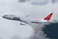 Screenshot of Northwest Airlines Boeing 737-400 in flight.