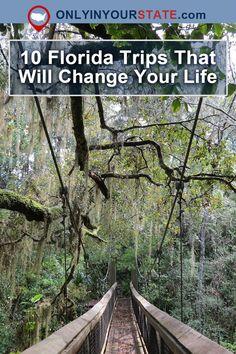 Travel | Florida | Trips | Adventure | Outdoor | Explore | Hiking