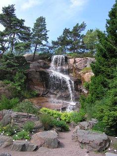 The Botanical Garden in Gothenburg. By: Johan Möller. Tags: #botanical garden #göteborg
