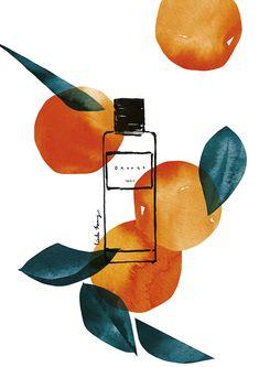 VO   Valérie Oualid : Agent d'illustrateurs   Cécile Huang   Le parfum - Orange Cecile, Illustrations, Pikachu, Cosmetics, Orange, Luxury, Fashion, Fragrance, Artist