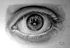 An eye is important for a detailed view. This picture describes about detailed view of eye