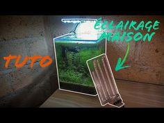Aquarium Terrarium, Home Appliances, Aquarium House, Simple House, House Appliances, Appliances