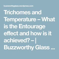 Trichomes and Temperature – What is the Entourage effect and how is it achieved? –   Buzzworthy Glass Pipes  