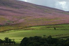 Lancashire Telegraph: The Trough of Bowland, one of the Queen's favourite places