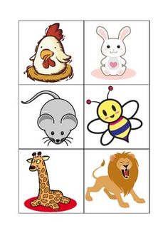 Cute Animal Flashcards