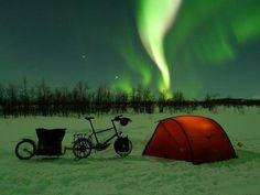 Minivelo. Tent. Trailer. Aurora.
