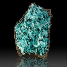 Acicular Plancheite crystals - Shinkolobwe Mine, Likasi, Katanga Province, D.R. Congo