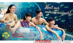 Please catch our model Wei L in the Adventure Cove Waterpark, Resorts World Sentosa Print ad