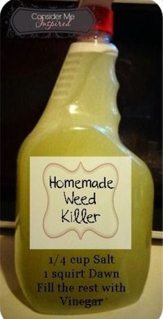 Weed killer- Vinegar, Salt and Dawn. I made a batch of this today and within hours the weeds were dead. It really worked. I am thrilled, because it is cheap, natural and easy Weed killer- Vinegar, Salt an Lawn And Garden, Home And Garden, Weed Killer Homemade, Homemade Weed Killers, Homemade Weed Spray, Lawn Care, Garden Projects, Garden Ideas Diy, Yard Ideas