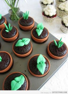 GARDEN PARTY_SPROUT CUPCAKES    Cute Food, Cute Cupcakes, Designer Cakes, Cupcakes Decorating, Kids Cupcakes, Cupcakes Ideas, Cute Cake - Part 23