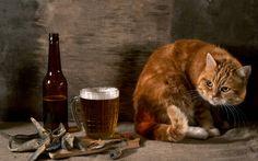 Картинка Рыжий кот, пиво и вобла