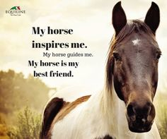 My horse inspires me. My horse guides me. My horse is my best friend.