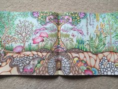 """""""All finished!!! Now for the difficult part, deciding which page to colour next #enchantedforest #johannabasford #fabercastell #polychromos #lostocean…"""""""