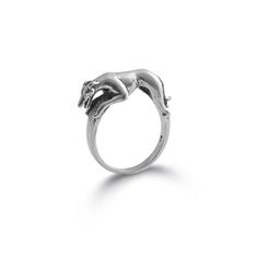 Mmmmm. The beauty of this magnificent breedtruly comes through in this beautiful Greyhound dog ring.This piece measures 1/4 inch wide, and 3/4 inch from ears to tail.This sleek design is a must have for the animal jewelry lover.