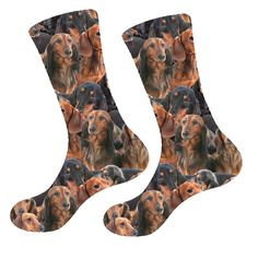 Fun Socks for everyone! Dog Socks, Gift Store, Animal Jewelry, Sloth, Best Gifts, Cute Animals, Fun, Pretty Animals, Cutest Animals