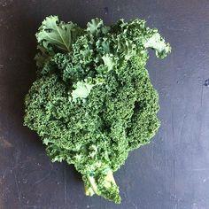 Król warzyw. #jarmuż #greens #lovegreens #kale #roślinnie #plantbased #vegan #plantpower #zdrowo