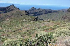 Tenerife, road on Masca.