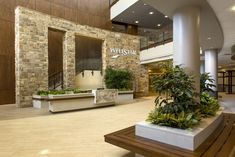 The entryway to WellStar East Cobb Health Park is filled with green planters, natural stone and bench seating so that the journey to the interior is more like walking through a park than to a doctor's office. Holistic Wellness, Health And Wellness, Health Care, Doctor Office, Natural Stones, Planters, Entryway, Bench, Walking