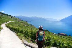 Promenade avec mini-baroudeuse dans le porte bébé aux vignobles en terrasses de Lavaux en Suisse