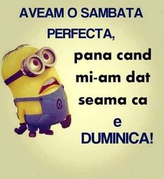 I WAS HAVING A PERFECT SATURDAY, untill I realised is SUNDAY! Funny Images, Funny Photos, Cool Illusions, Sarcastic Humor, Life Humor, Satire, Minions, Haha, Minion