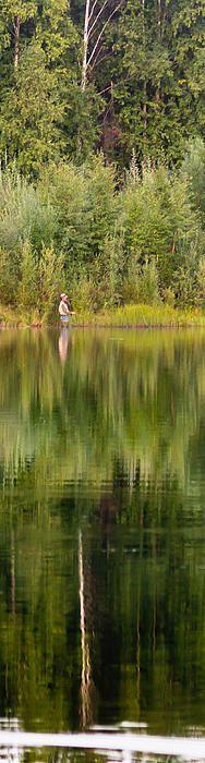 Fly Fishing for Grayling near Fairbanks Alaska.