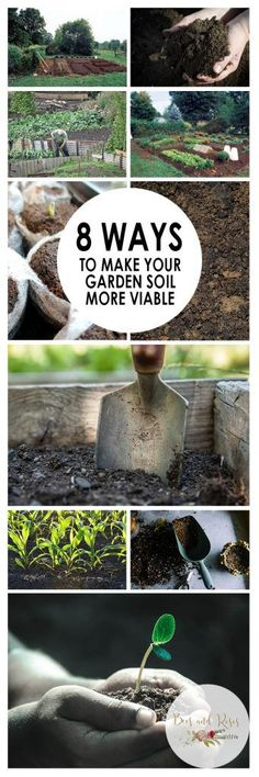 8 Ways to Make Your Garden Soil More Viable_W