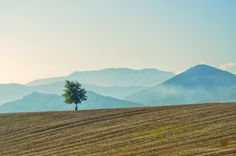 """Alone in Lazio"" by Caffeinated Photographers, via 500px."