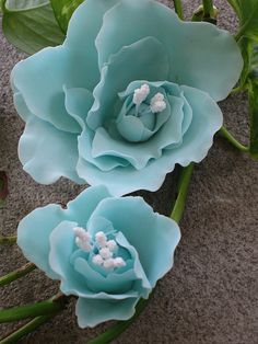 These are gum paste flowers made by using the heart shaped cookie cutter, foam, and the ball tool.
