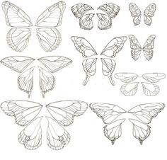 Copy of Butterfly Wings.jpg - Fantasy Art
