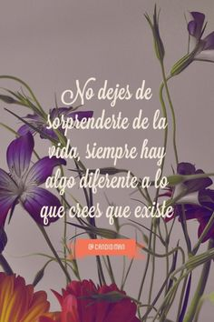 """""""No dejes de sorprenderte de la #Vida,"""