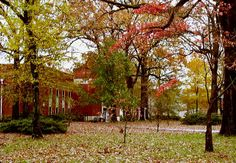 Harding University in the fall - I spent four wonderful years here.
