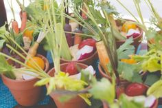 summer crudités with organic vegetables in flower pots