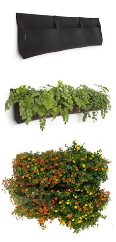 Great DYI project: create a beautiful indoor or outdoor vertical garden! urbilis.com