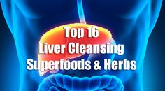 The liver is one of the body's vital organs. It is responsible for many important functions related to digestion, metabolism, immunity and the storage of nutrients that the body needs to survive. M…